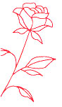 rose-left-img